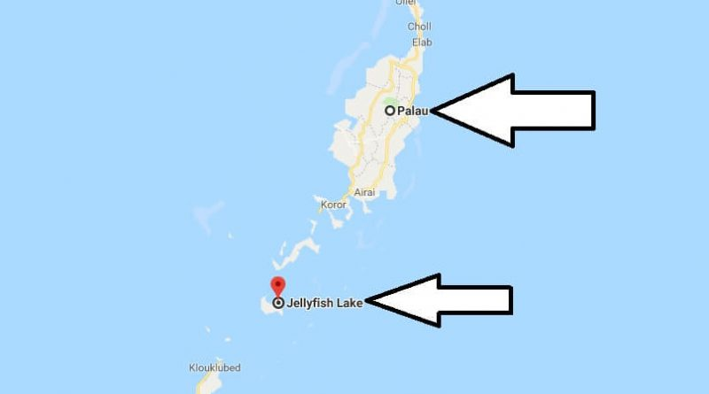 Where is Jellyfish Lake? What Country is Jellyfish Lake in? Jellyfish Lake Map