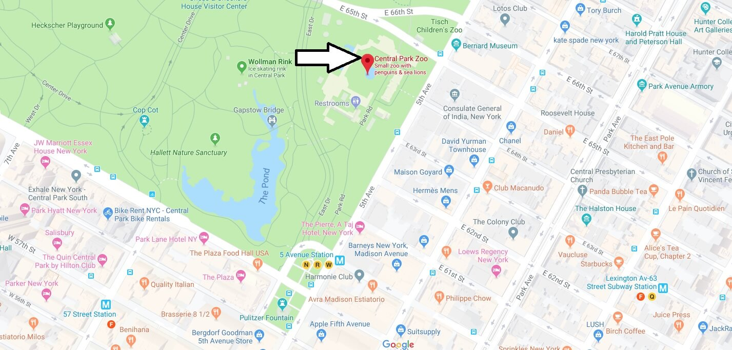 Where is Central Park Zoo Located Prices,Tickets, Hours, Map