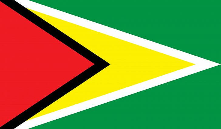 Flag of Guyana