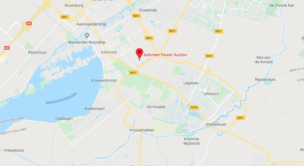 Where is Aalsmeer Flower Auction