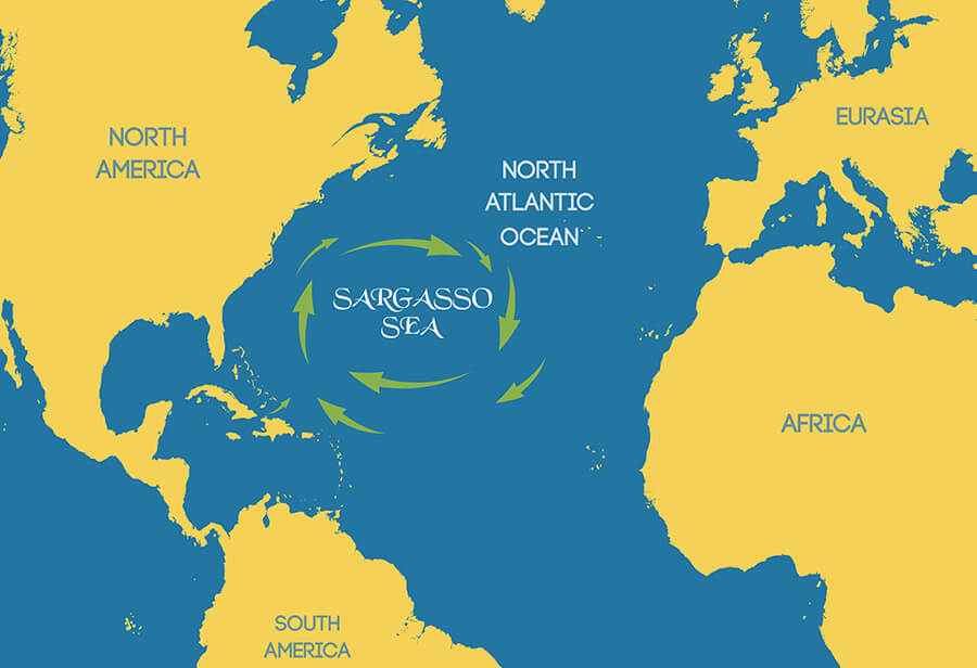 Where is Sargasso Sea - Are there any islands in the Sargasso Sea