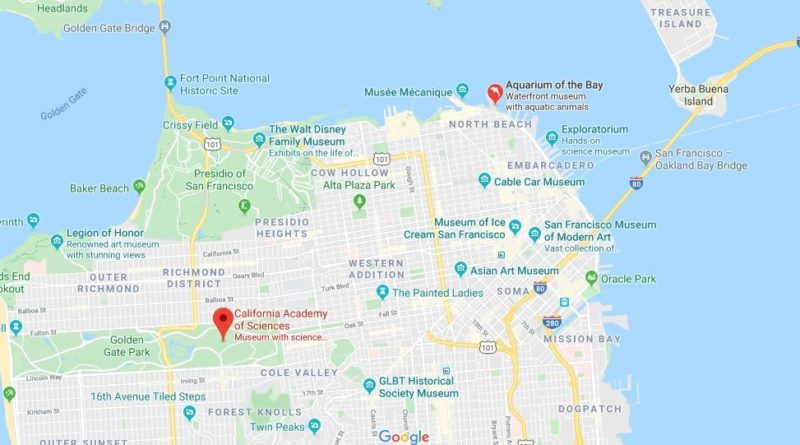 Where is Steinhart Aquarium? What is there to do at the California Academy of Sciences?
