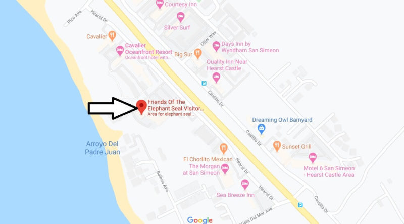 Where is Friends Of The Elephant Seal Visitor Center and Gift Shop - Where can I see elephant seals