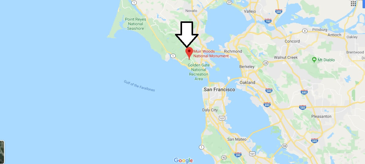 Where is Muir Woods National Monument? How do you get to Muir Woods National Monument?