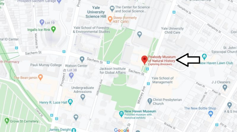 Where is Yale Peabody Museum of Natural History? When is Yale Peabody Museum of Natural History open?