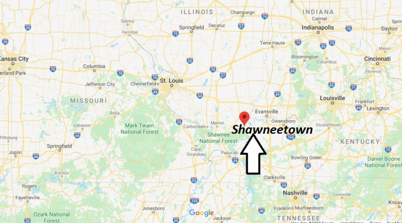 Where is Shawneetown, Illinois? What county is Shawneetown in? Shawneetown Map