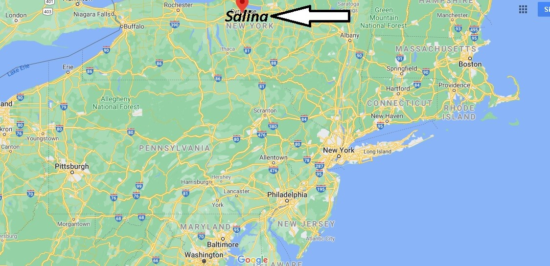 What county is Salina NY in