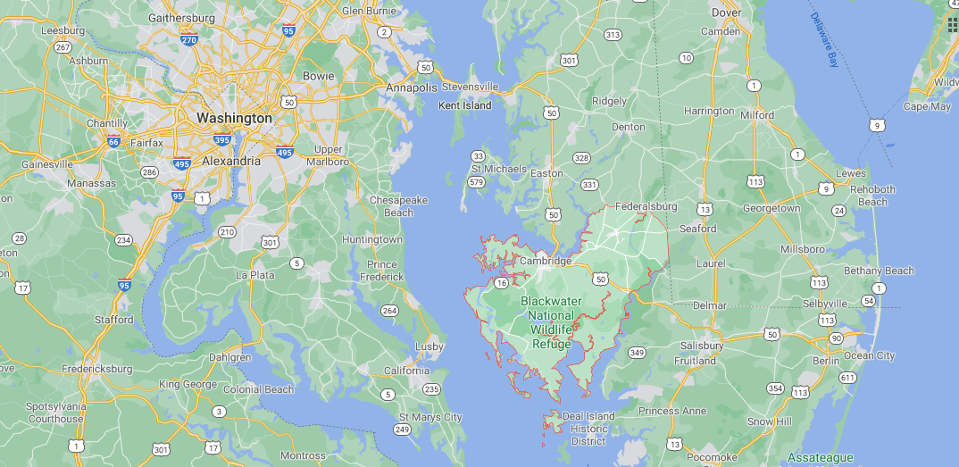 Where in Maryland is Dorchester County