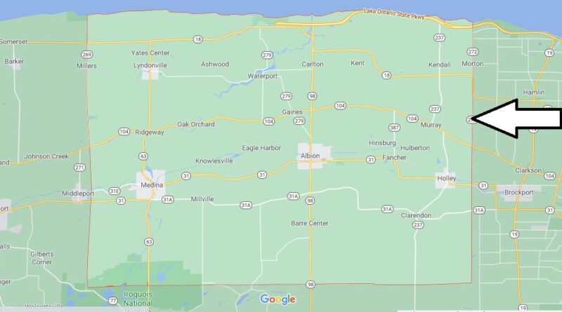 Where is Orleans County New York