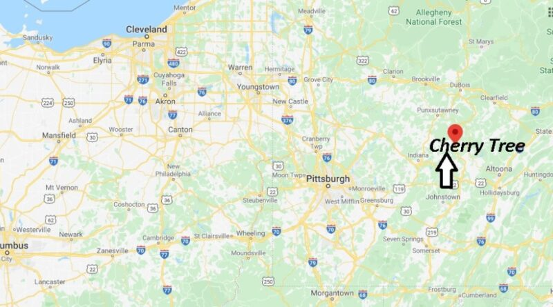 Where is Cherry Tree Pennsylvania? Zip code 15724