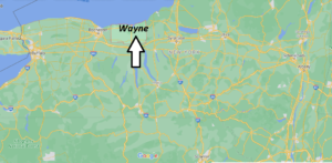 What county is Wayne NY in